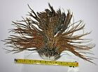 CREE TYPE ROOSTER SADDLE HACKLE LONG THIN DRY FLY TYING FEATHERS #010