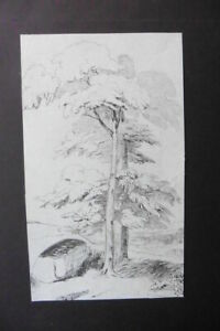 FRENCH SCHOOL 19thC - LANDSCAPE WITH TREES - FINE INK DRAWING