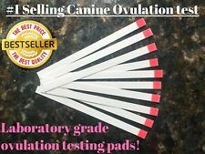 10 🔥Canine Ovulation Fertility 🐾Testing PINK Strips Progesterone Test @ Home🌸