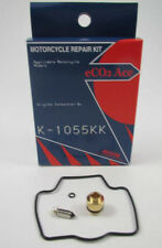 Kawasaki ZX900  ZX-9R  1998-1999  Carb Repair Kit