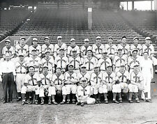 St Louis Browns - 1944 AL Champions -  8x10 B&W Team Photo