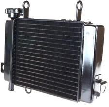 Radiateur HONDA CBR 125  R (JC34/JC39) CBR 125 RW 2004 - 2009