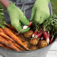geschälte Kartoffelreinigungshandschuhe Küche Gemüse reiben Obst Haut kratzenXUI