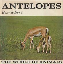 ANTELOPES Rennie Bere **GOOD COPY**