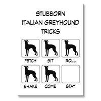 ITALIAN GREYHOUND Stubborn Tricks FRIDGE MAGNET Steel Case Funny