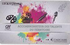 CARTE CASHLESS (VIDE) - FESTIVAL L'ECAUSSYSTEME 2017 GIGNAC - COLLECTOR