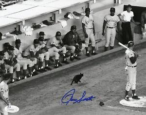 Chicago Cubs Ron Santo Signed 8x10 Black Cat Photo James Spence JSA COA