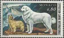 Timbre Chiens Monaco 1093 ** lot 18915