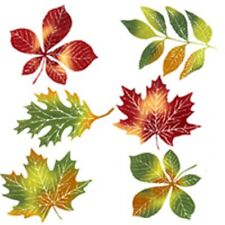 Fall Leaves Color Enamel Water Slide Fused Glass Decals Low to Hi Fire