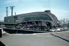 pu3502 - Engine No.60005 Sir Charles Newton at Haymarket Shed - photograph 6x4