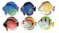 "5"" x 4.5"" Multi-Color Exotic Set of (6) Decorative Tropical Wall Decor Fish!"
