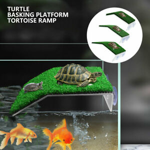 Turtle Basking Platform Ramp Reptile Tank Ladder Resting Terrace Simulation