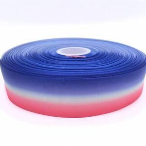 "Hot Pink Blue White Ombre 1.5""  38mm Grosgrain Ribbon per meter"