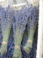 Natural Dried French Provence Fragrant Lavender Bunch Tied by Hand 150 stems