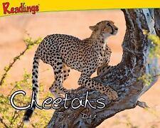 Cheetahs (Predator Animals)