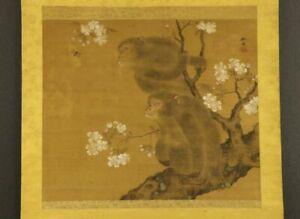 "JAPANESE HANGING SCROLL ART Painting ""Monkey and Sakura"" Asian antique  #E4623"