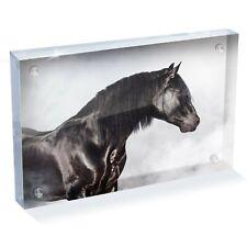"Andalusian Horse Spanish Photo Block 6 x 4"" - Desk Art Office Gift #12493"