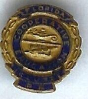 old Florida cooperative Education Clubs pin Muini badge Miniature pinback pin