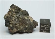 Amazing looking Lunar Meteorite NWA 11273 - 12.7 grams - Own the Moon