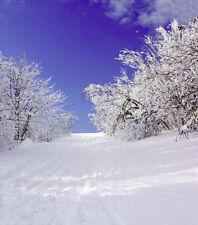 CHRISTMAS WINTER SNOWY MORNING BLUE SKY BACKDROP VINYL PHOTO PRO 5X7FT 150x220CM