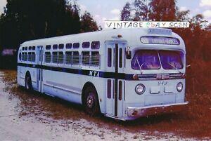 Miami Transit Bus Photo