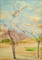 Muriel Bentwich: Budding Trees in Landscape/ Israeli British Jewish S/Watercolor