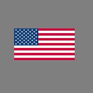 Pegatina 6,5cm Bandera de Ee.uu. USA Fútbol Fan Em WM Decoración