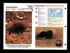 Star Nosed Mole Wildlife Fact File Mammal Animal Card Home School Study 1.244