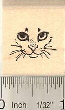 Teeny Tiny Cat Face Rubber Stamp B10609 WM
