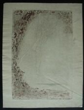 PIERRE ROCHE FERNAND MASSIGNON (1855-1922) GYPSOGRAPHIE SIGNEE LES HESPERIDES