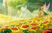 Peter Pan Poster Length :800 mm Height: 500 mm  SKU: 1138