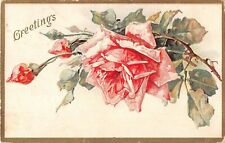 Beautiful Pink Roses on Old Greetings Postcard
