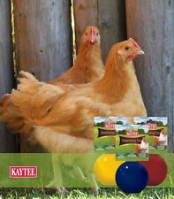 Kaytee Dispensing Toy for Chickens Colors Vary (Free Shipping in USA)