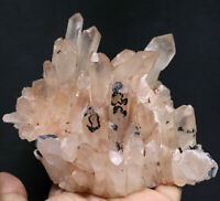 1.63lb Natural Beautiful Pink Quartz Crystal Cluster POINT Mineral Specimen