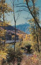 Chrome Postcard B060 Provo Canyon Autumn Splendor Willard Luce Central Utah