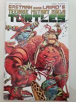 TEENAGE MUTANT NINJA TURTLES #43 (1992) MIRAGE COMICS EASTMAN & LAIRD! 1ST PRINT