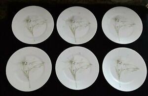 Corelle Vitrelle White Flower Set of 6 Dinner Plates Lily Blossom