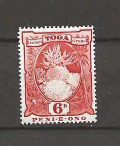 Tonga 1897 Fauna Wildlife Marinelife Fisch Fish Coral stamp MNH