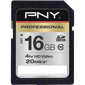 PNY 16G HD video class 10 SD card for Canon SX150 SX230 SX260 Sony H90 RX100