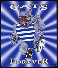 1  x GEELONG CATS OR OTHER AUSSIE RULES MOUSE MAT / SMALL PLACE MAT