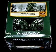 Yankee Candle  TEELICHTER, EVERGREEN MIST, 12 Stck.