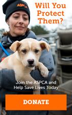 ASPCA Donation Listing! Help Animals in Need! 1 Per Buyer Limit!