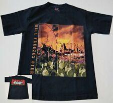 Vintage 1994 Eagles Hell Freezes Over World Tour 1995 Concert T-Shirt Men Large