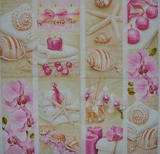 Tabla de papel del mar Sheld Candelas Servilleta Para Fiestas De Té Vintage Decoupage Artesanales 571
