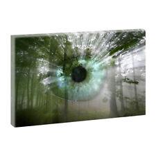Große Deko-wandbilder-Wald
