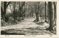 PC26371 The Beeches. Reigate. Frith. 1965