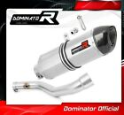 R 1100 GS Exhaust HP1 Carbon Dominator Racing silencer muffler