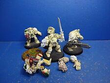 5 Terminatoren mit Forgeworld Schulterpanzern der Dark Angels 1