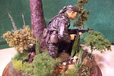 dragon models 1/16 scale u.s. vietnam special forces figure on real wood stand