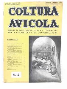 Rivista Allevamento Polli E Conigli-Coltura Avicola Marzo 1936